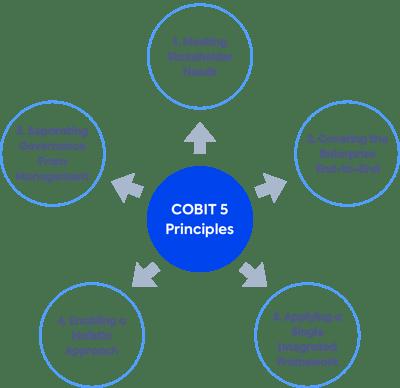 Cobit_Framework_for Finance_Industry