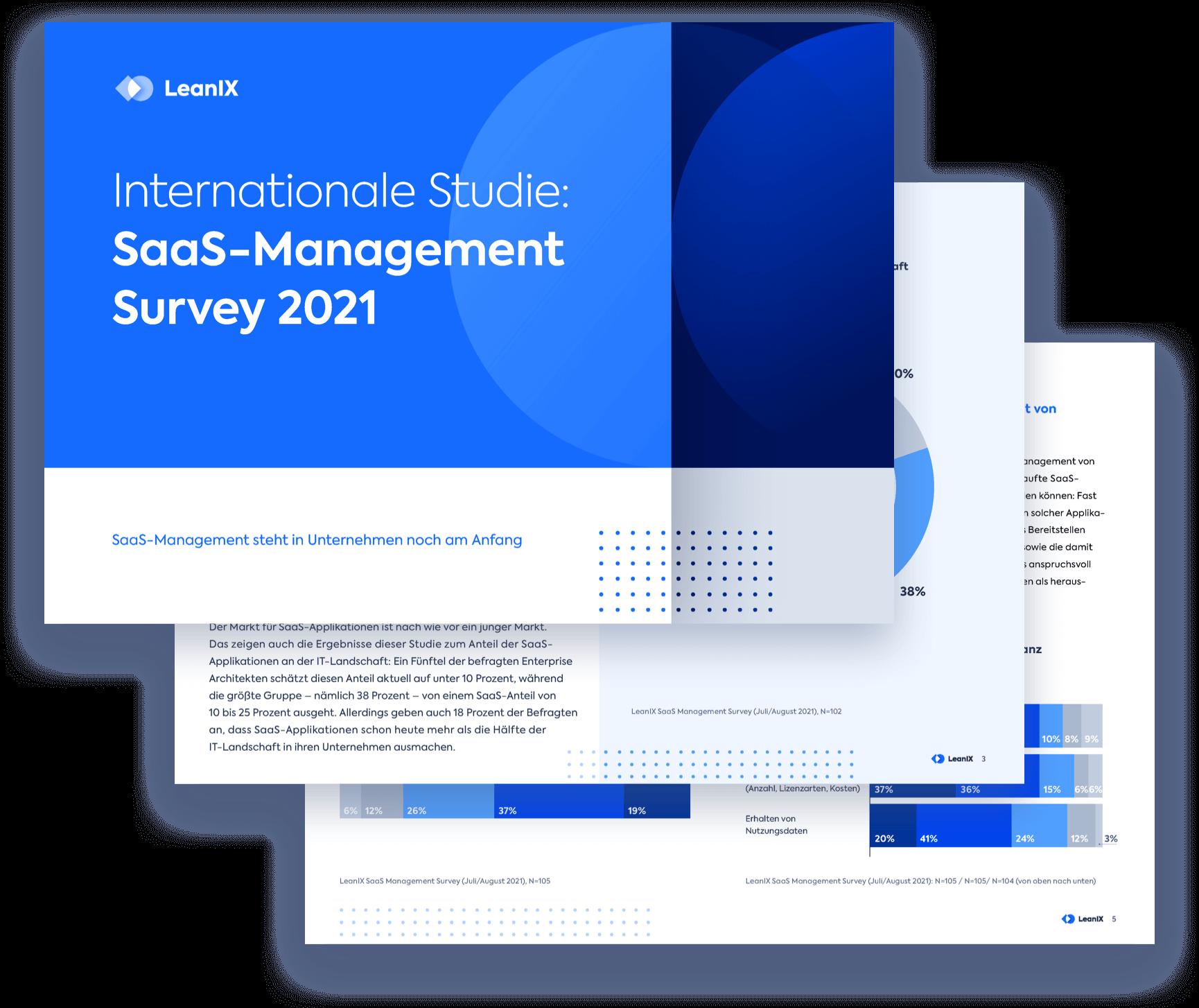 DE-SAAS-Customer-Survey-Landing_Page_Preview_Image