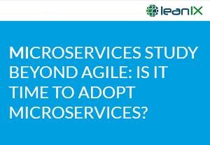 Microservice Studie: Was kommt nach agil?