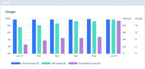 LeanIX SI SaaS usage graph based on license usage.