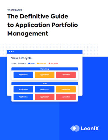 Application Portfolio Management